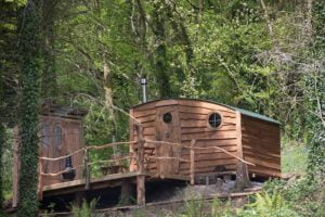 shepherd glamping hut in the woods